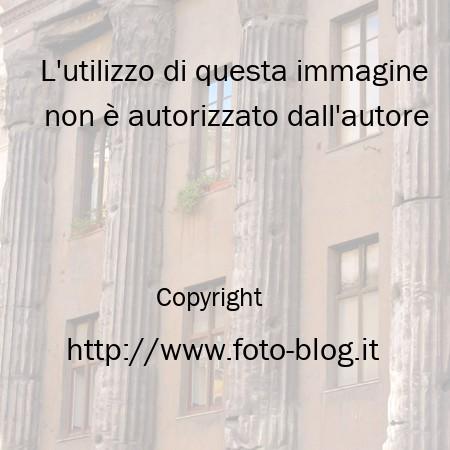 Finestre tra le colonne romane filippo foto blog - Le finestre roma ...