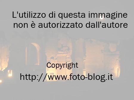 Terme Di Caracalla. sulle Terme di Caracalla
