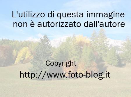 Le dolomiti in autunno filippo foto blog for Foto per desktop gratis autunno